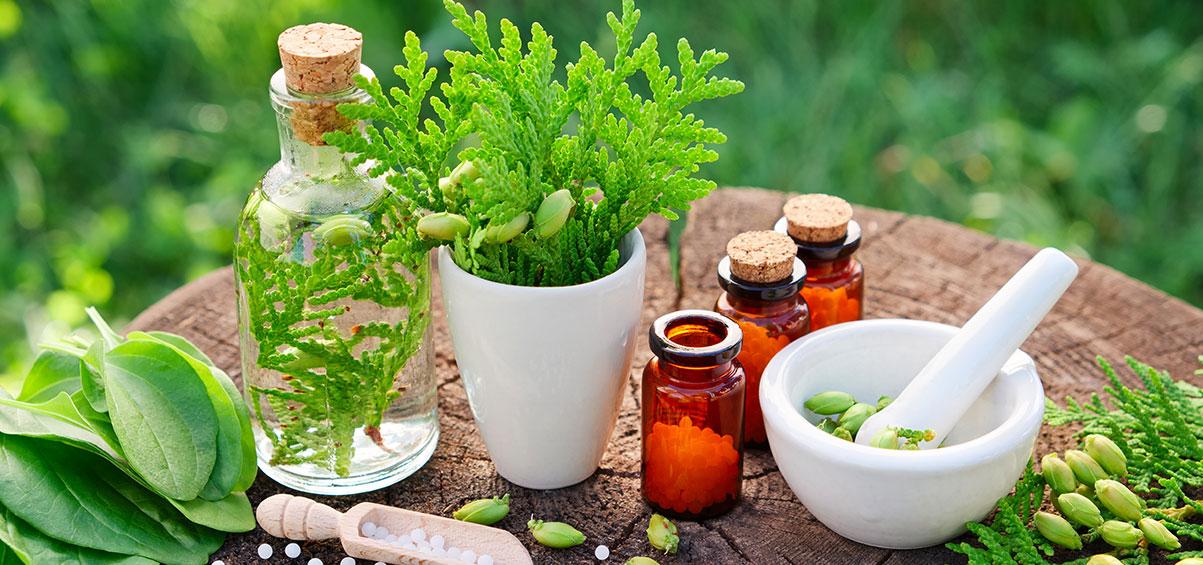 Bestandteile von Homöopathie
